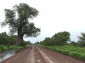 Zambian roads